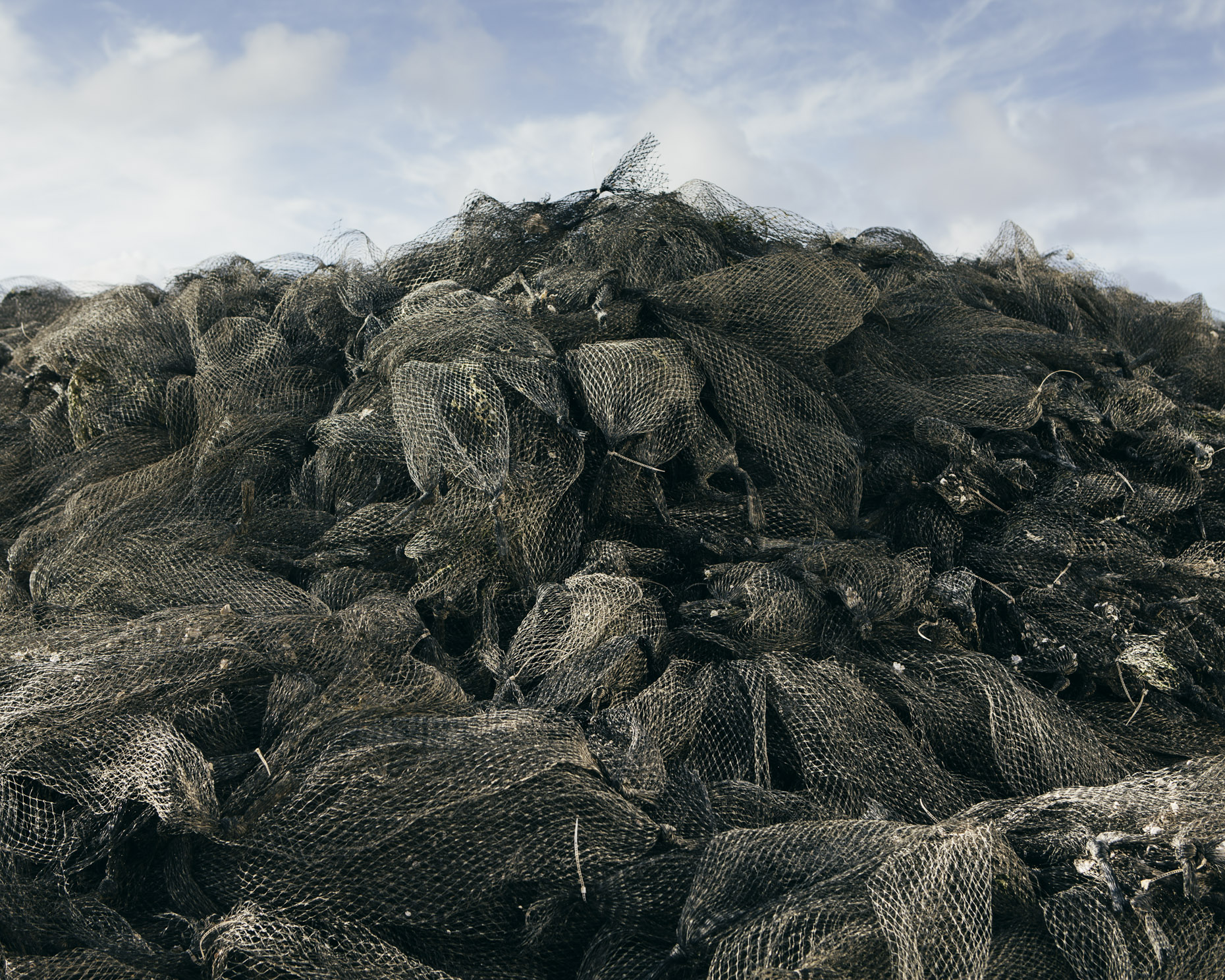 Oyster bag pile, Oysterville, WA - Paul Edmondson